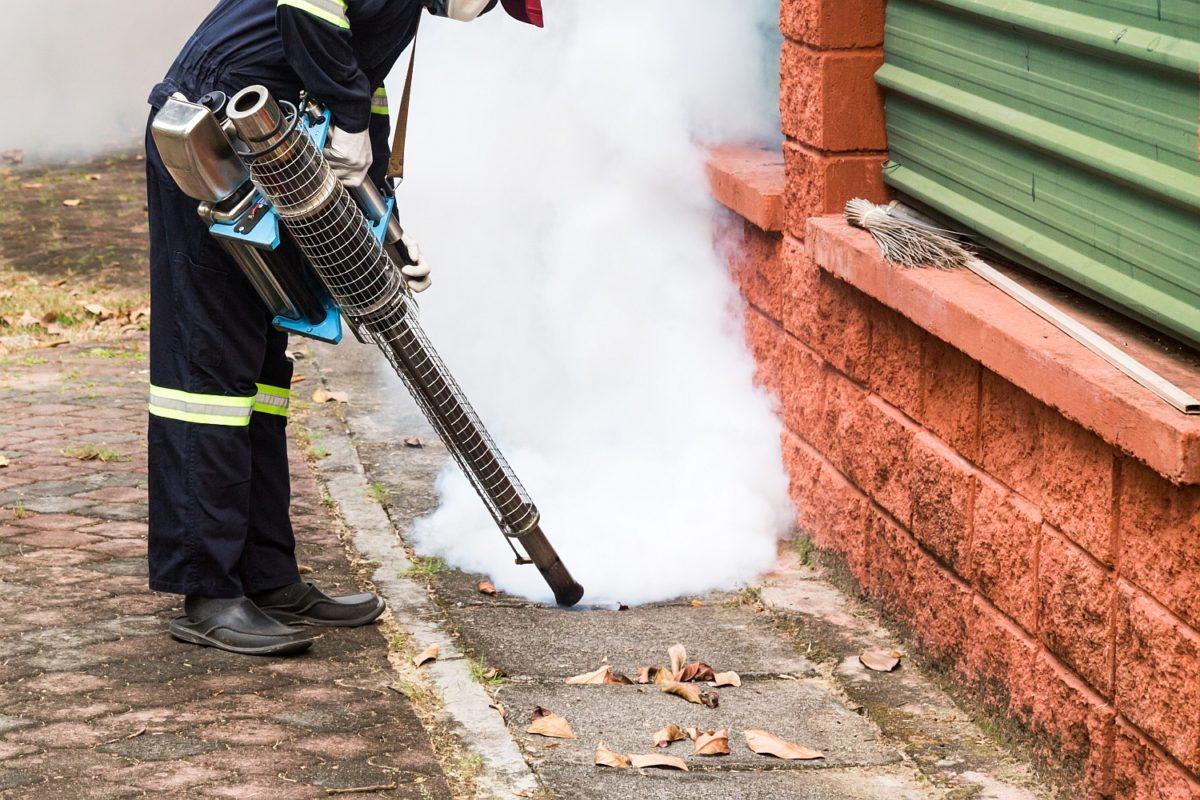Wyeliminowanie komarów – stosowanie specjalnych oprysków